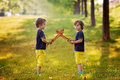 Two little boys holding swords glaring with a mad face at each other fighting outdoors in the park Royalty Free Stock Photos