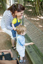 Two little boys and mother feeding animals in zoo Royalty Free Stock Photography