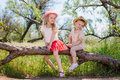 Two little brother and sister sitting in a tree Royalty Free Stock Photo