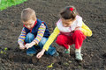 Two little children planting seeds in the field Stock Photography