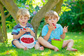 Two little friends, kid boys having fun on raspberry farm in summer Royalty Free Stock Photo