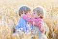 Two little sibling boys having fun and hugging on yellow wheat Royalty Free Stock Photo
