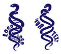 Two logotypes of snakes weaving each other and forming DNA picture.