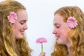 Two long haired girls with pink flowers caucasian gerberas Stock Photography