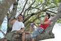 Two man having fun on tree Stock Images