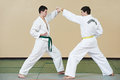 Two man at taekwondo exercises Royalty Free Stock Photography