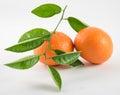 Two mandarins orange(tangerines) isolated on white background Royalty Free Stock Photo