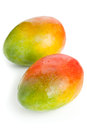 Two mangoes over white background fresh ripe organic Stock Photos