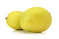 Two mangos Stock Image
