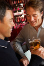 Two Men Enjoying Drink Together In Bar Royalty Free Stock Photo