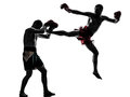 Two men exercising thai boxing silhouette caucasian in studio on white background Royalty Free Stock Photo
