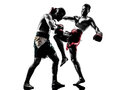 Two men exercising thai boxing silhouette caucasian in studio on white background Royalty Free Stock Photos