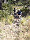 Two men mountain biking down a hill Stock Images