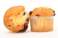 Two mini muffin Stock Photography