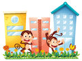 Two monkeys dancing in front of the buildings illustration on a white background Stock Photo