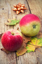 Two mouth watering apple harvest of late autumn Royalty Free Stock Images