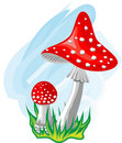Two mushrooms.Vector. Royalty Free Stock Images
