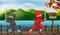 Two ninjas Royalty Free Stock Photo