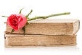 Two old books with rose,isolated Royalty Free Stock Photo