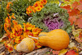 Two orange pumpkins, chrysanthemums and decorative cabbage Royalty Free Stock Photo