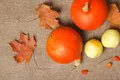 Two orange pumpkins and green apples dried leaves on a grey sackcloth Royalty Free Stock Image