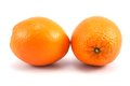 Two oranges fruit on white background Stock Photography