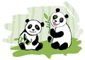 Two pandas. Stock Images