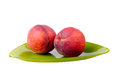 Two peaches on a green plate Royalty Free Stock Photo