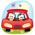 Two Penguins in a car