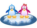 Two penguins drifting on ice floe charming boy and girl Royalty Free Stock Image