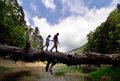 Two people walking on fallen tree trunk on the balance young adult and child balancing a dead in nature Royalty Free Stock Photos