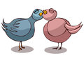 Two Pigeons in Love. Royalty Free Stock Photo