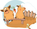 Two pigs friends to a pig with a gift Stock Images