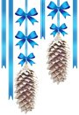 Two pine cones with blue bows Stock Images