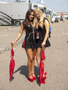 Two pitbabes are posing behind the pitlane zandvoort netherlands july in paddock after race of fia gt series during Royalty Free Stock Images
