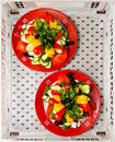 Two plates with vegetables Stock Image