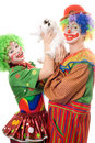Two playful clown with a white rabbit Stock Photography
