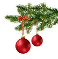 Two red glass balls on Christmas tree branch Royalty Free Stock Photo