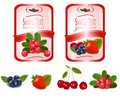 Two red labels with berries and cherries. Royalty Free Stock Photo