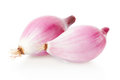 Two red onions, Tropea type on white Royalty Free Stock Photo