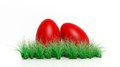 Two red painted easter eggs with green grass Royalty Free Stock Image