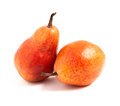 Two red pears on white background Royalty Free Stock Photo