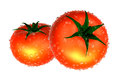 Two red tomato covered with raindrops foods and dishes series Royalty Free Stock Photo