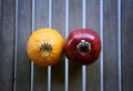 Two rings wedding on an apple and an orange Royalty Free Stock Photos