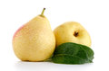 Two ripe pears on white background Stock Photo