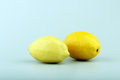 Two ripe yellow lemons in studio Royalty Free Stock Photo