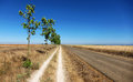 Two roads one destination parallel in the spanish meseta along the camino de santiago Royalty Free Stock Photography