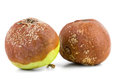 Two rotten apples isolated on the white background Royalty Free Stock Photos