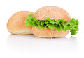 Two sandwich bun with green salad leaf isolated on white background Stock Images