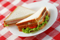 Two sandwiches Royalty Free Stock Photo